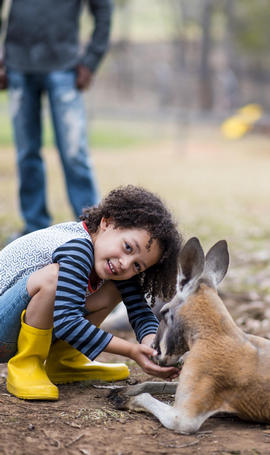 girl squatting down and feeding kangaroo